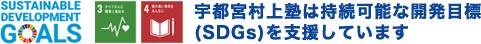 宇都宮村上塾は持続可能な開発目標(SDGs)を支援しています